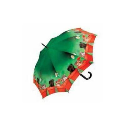 Doppler félautomata női esernyő (cicás)